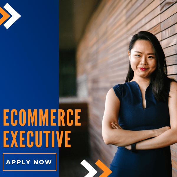 Apply For ecommerce executive