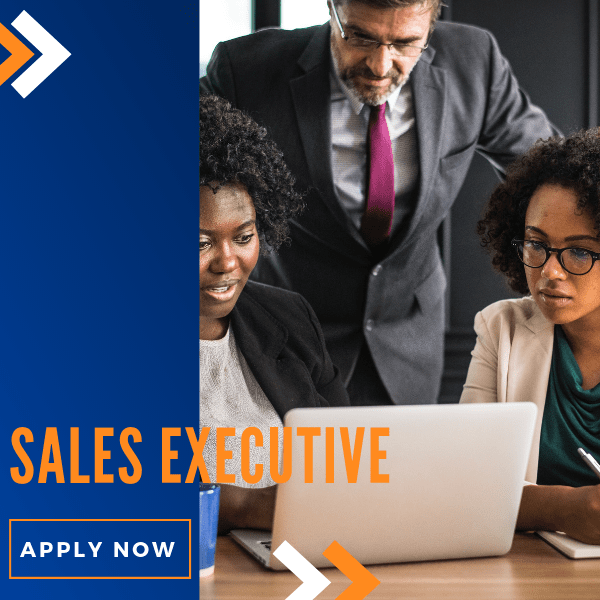 Apply for sales executive